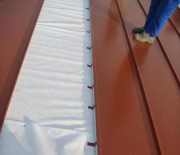 Roof and Insulation Systems