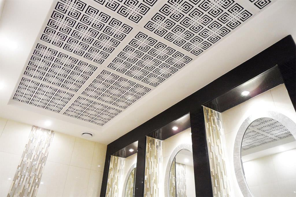 Deco Ceiling Decorative Suspended Ceiling Systems