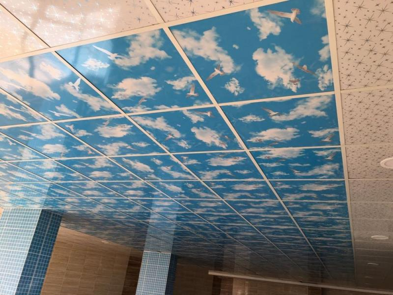 Plastic Pvc Suspended Ceiling Systems